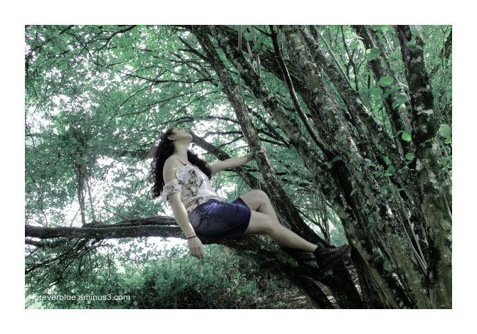 ... GIRL ON TREE ...