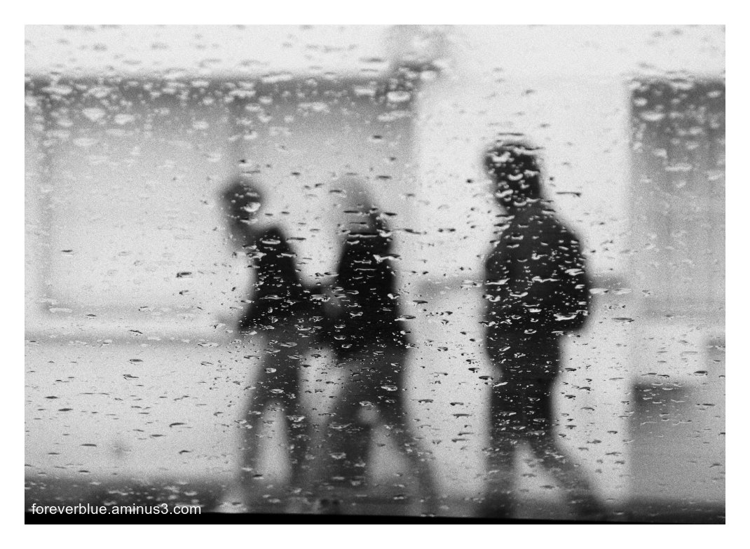 ... EVERLASTING RAIN  ...