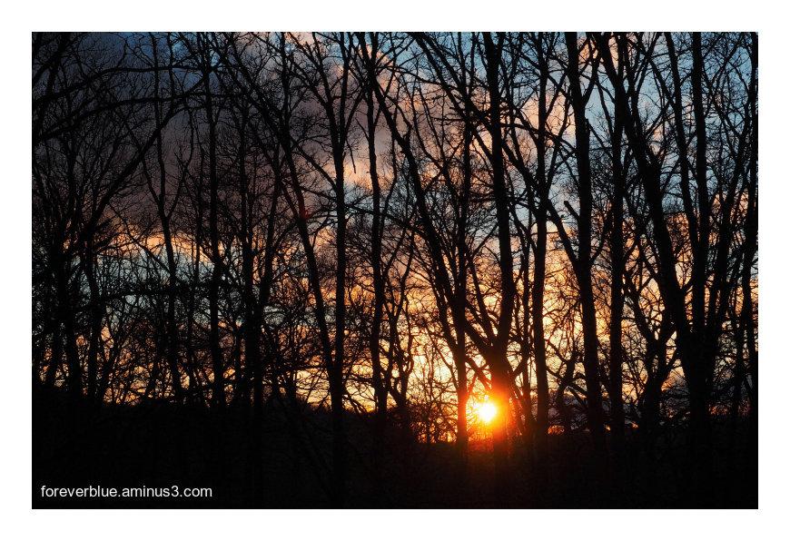 ... A LAST KISS FROM THE SUN ...