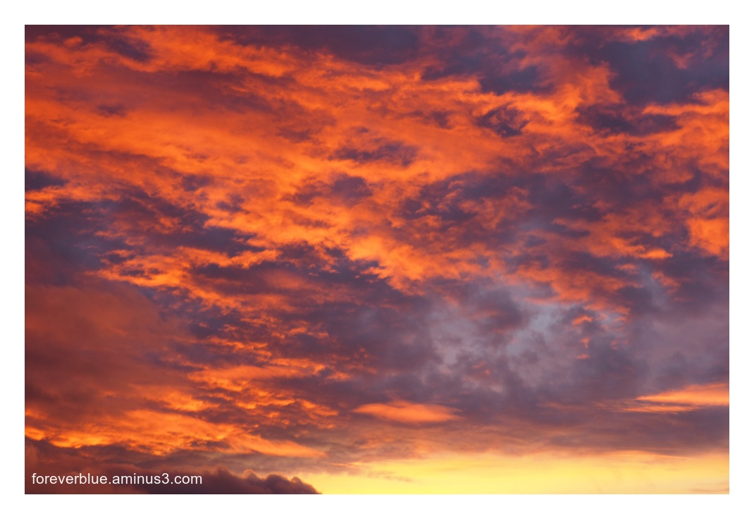 ..UNDER THE RED SKY ...