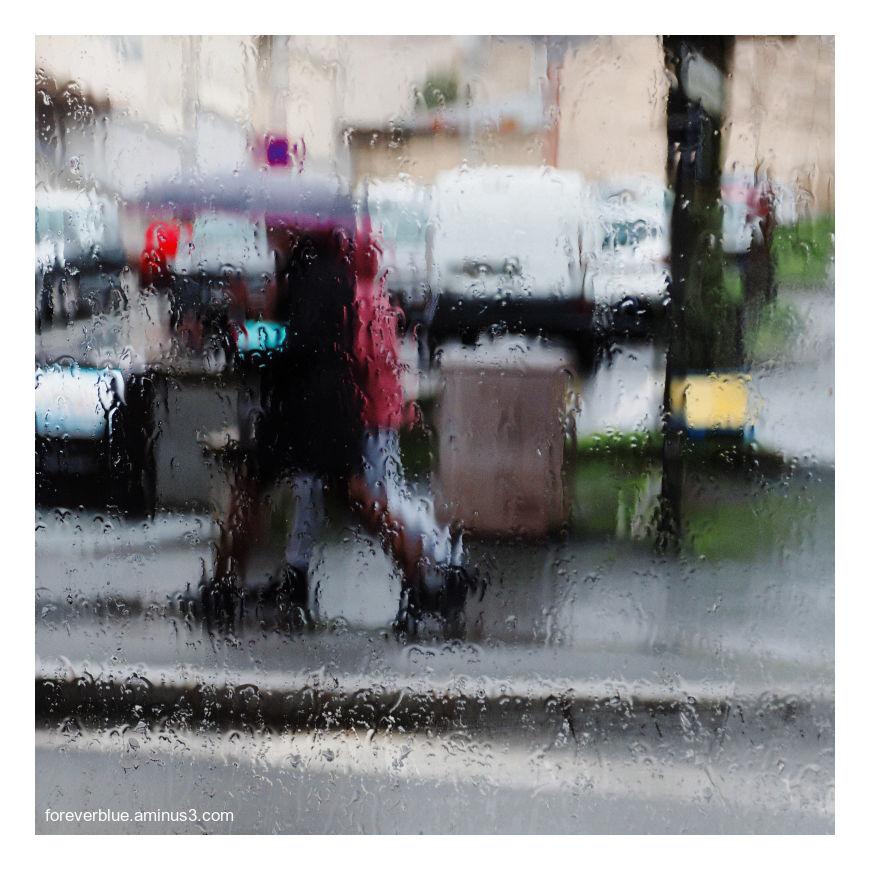 ... HARD RAIN ...