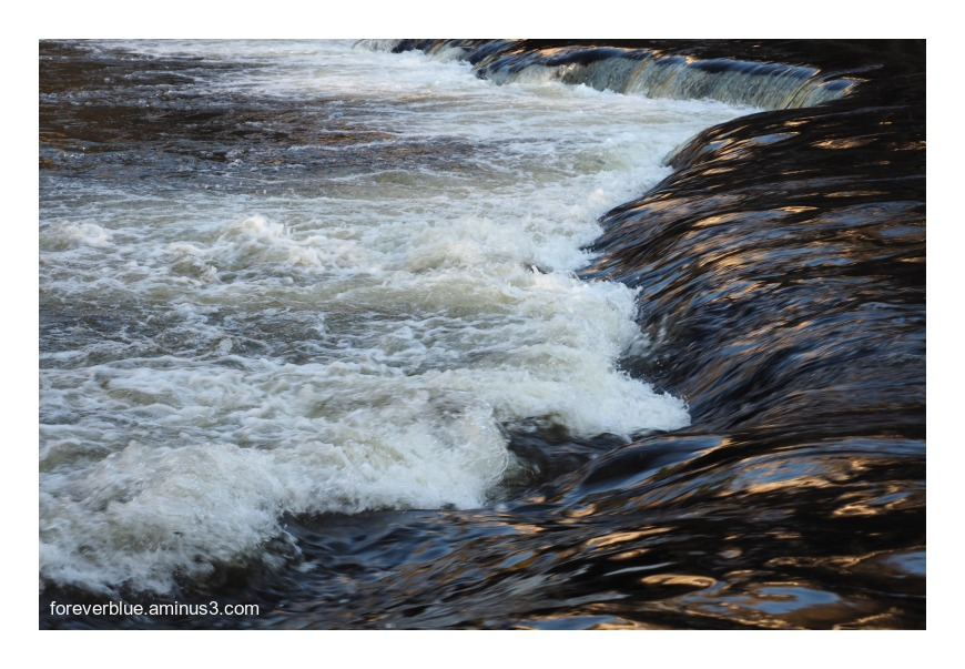 ... THE ROARING RIVER ...