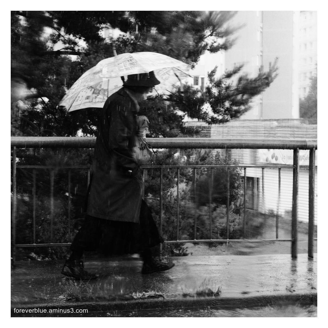... RAIN SONG  (1)...