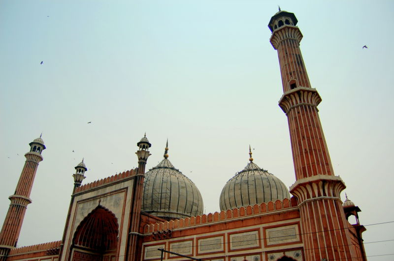 Dome and Minarets of Jama Masjid Mosque, Delhi