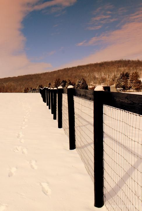 Footprints and Snowposts