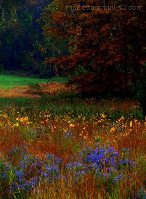 Fall Watercolor