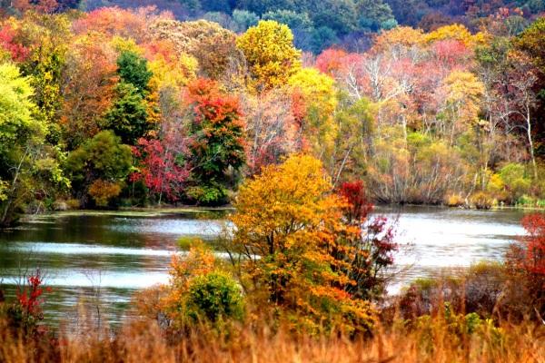 October Pallet