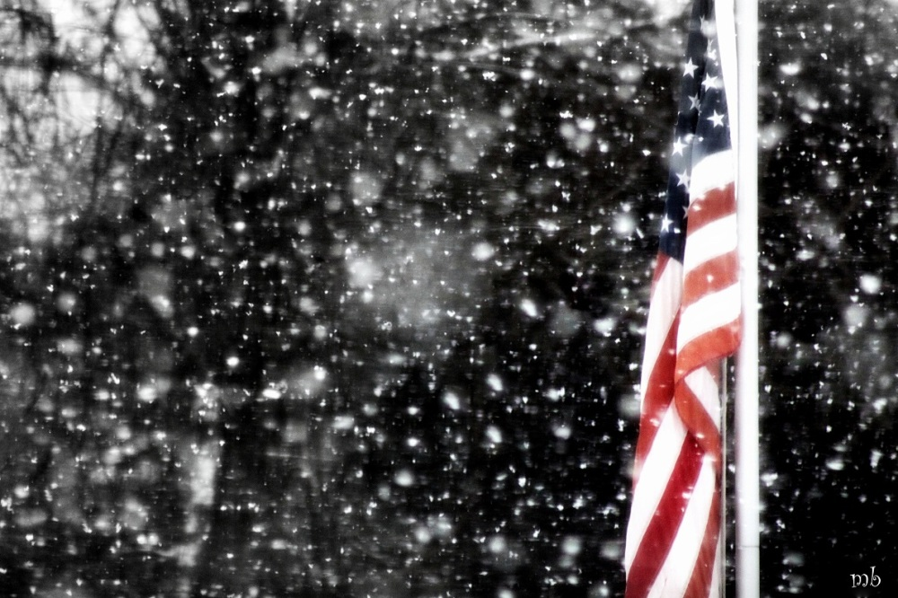 Flag in the Snow Storm