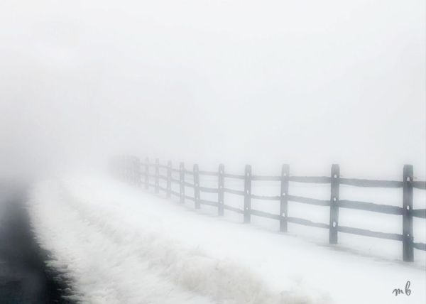 Fence Line Fog