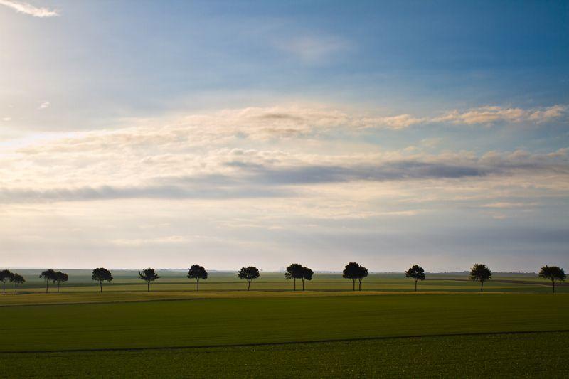 un paysage de Champagne Ardenne