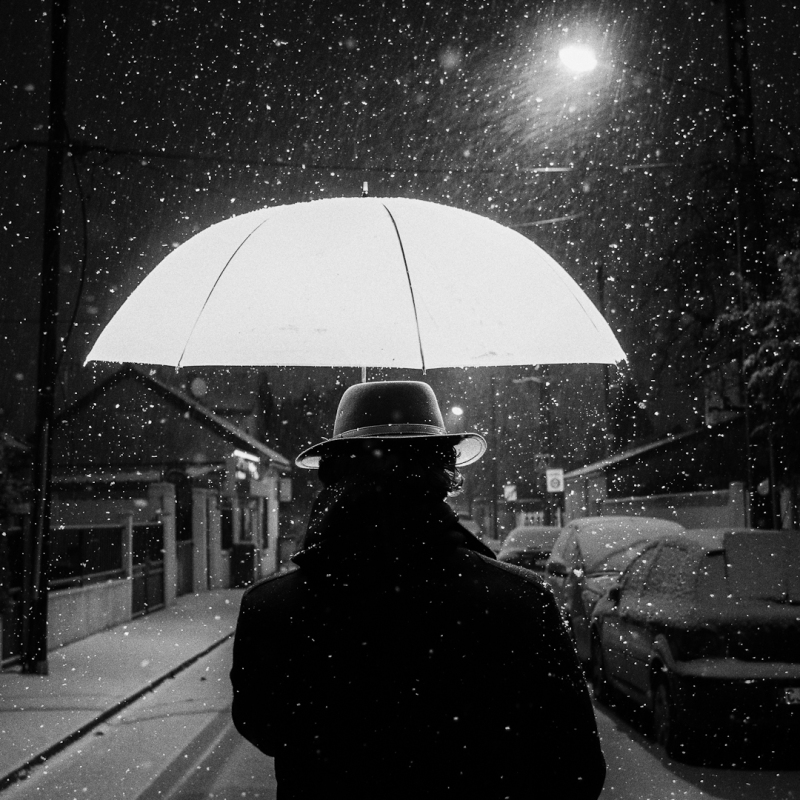 Balade sous la neige