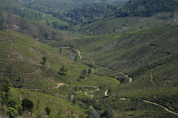 mountain ranges in Idukki...