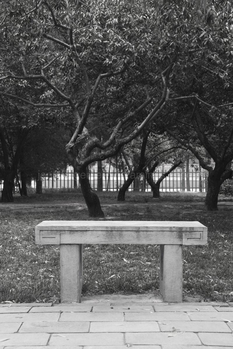 Beijing Park Bench
