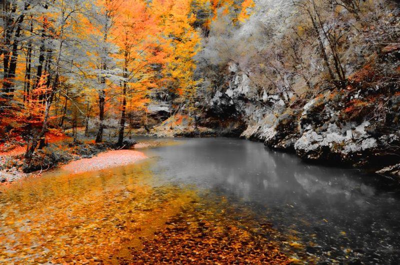 Topaz Autumn