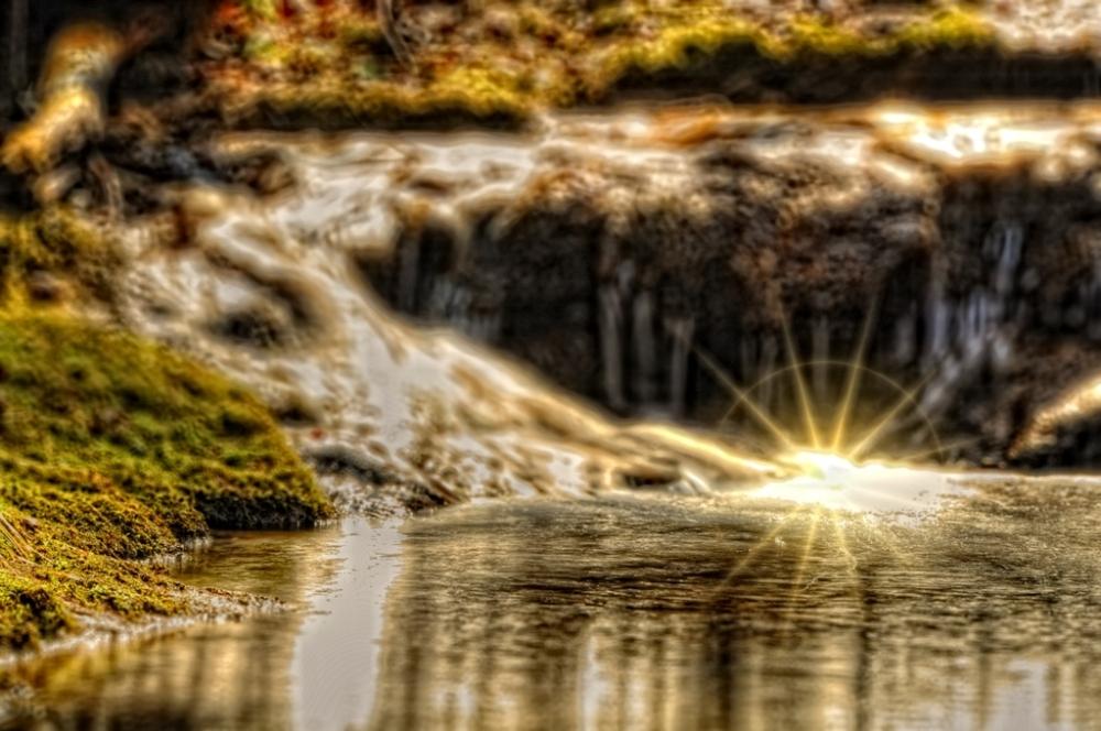 Wild brook