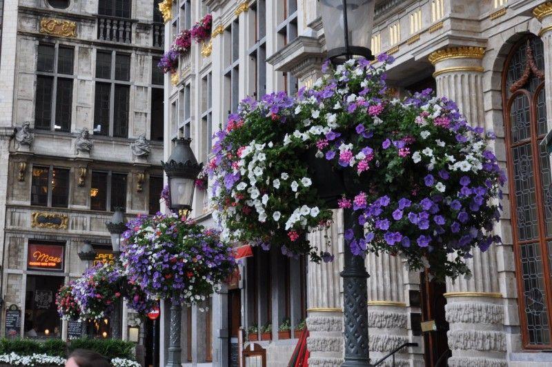 grand'place de Bruxelles 2
