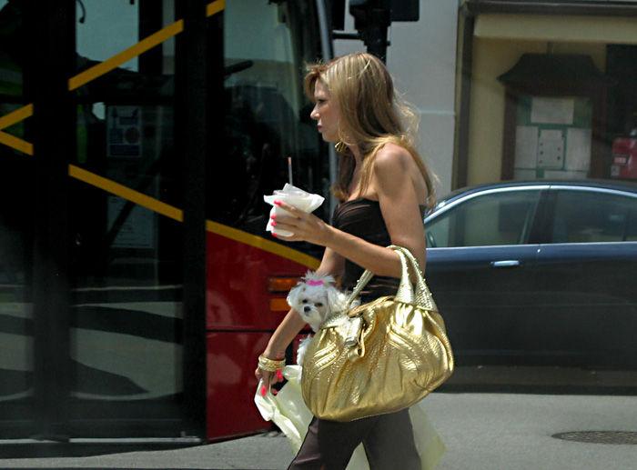 Doggy-Cutie Bag