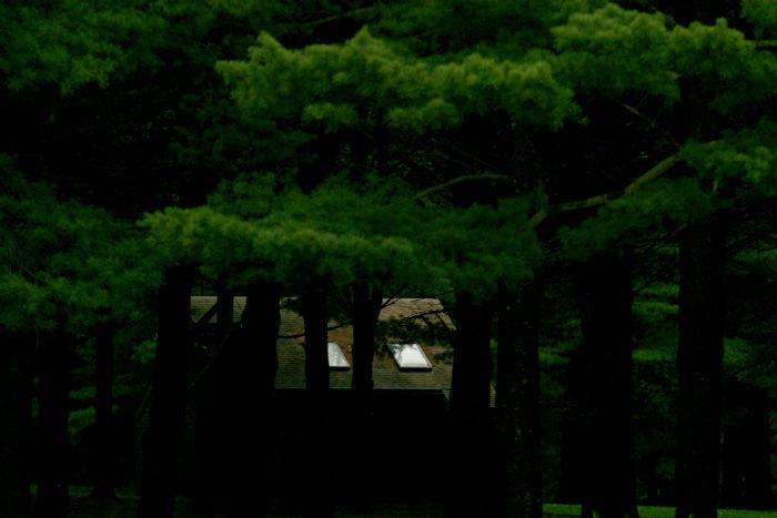 Rideau Vert