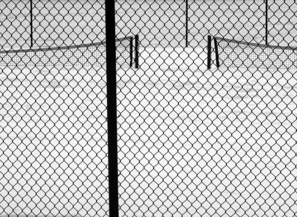 L'hiver monté au filet...pris à la volée
