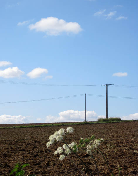 Le Tremblay (pas très loin du village)