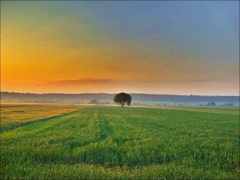 Burgendand