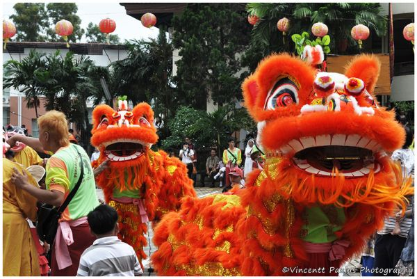 Lion Dance at Chinese New Year Celebration