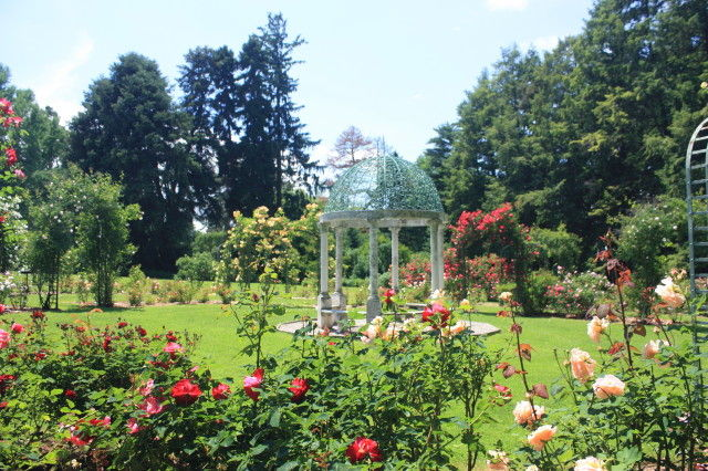 Rose Garden at Lyndhurst, Tarrytown, NY