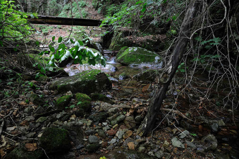 Photography of Green Stone Valley