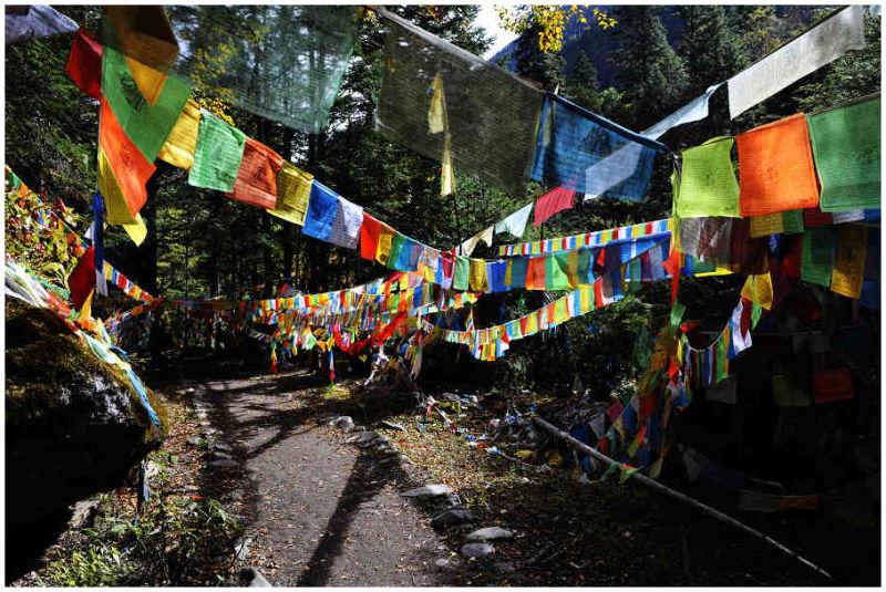 photography of Yubeng Lower Village