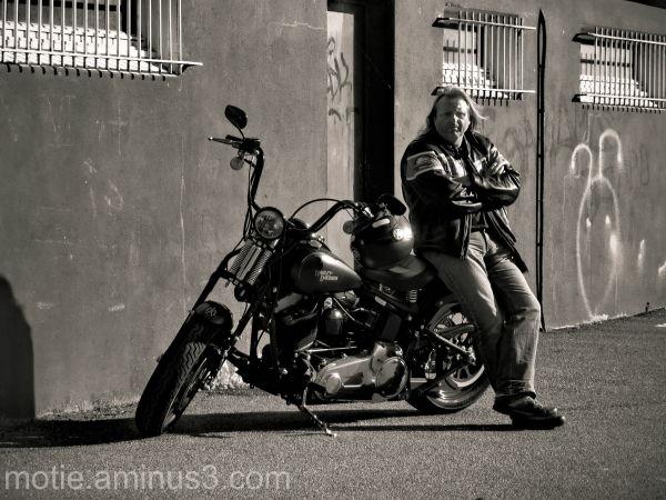 Harley motos
