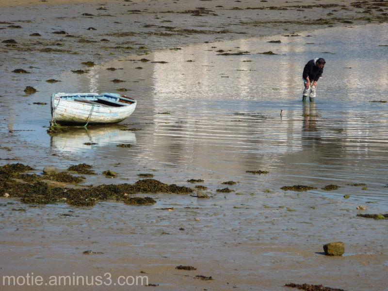 boat barque