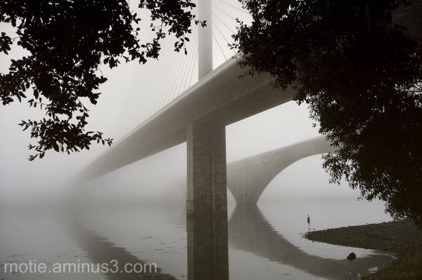 bridges mist