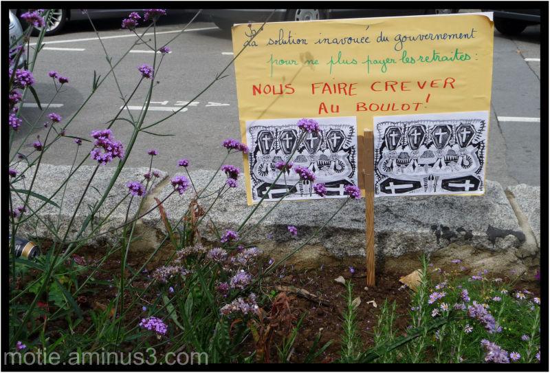 le dire avec des fleurs.../ Say it with fowers...