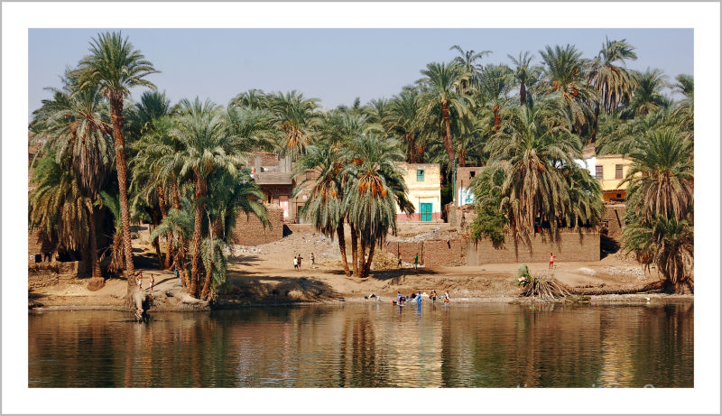 life on the banks of the Nile...