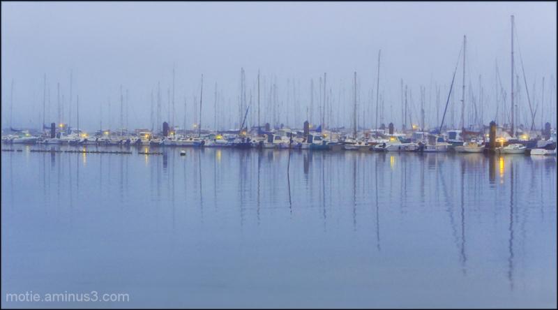 Marina in the Mist