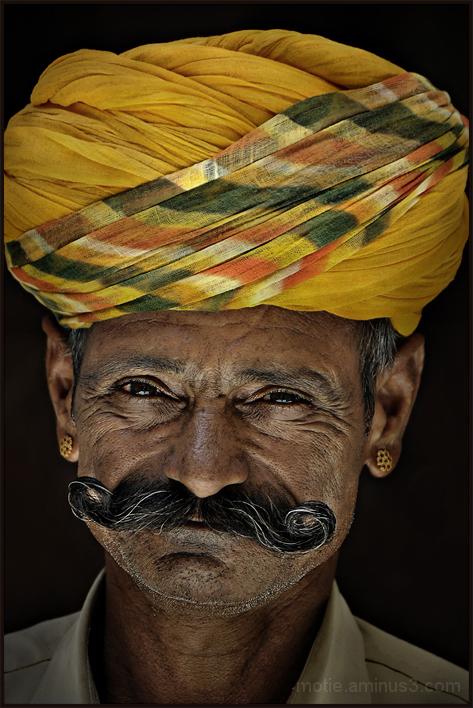 Wiskers of Rajasthan