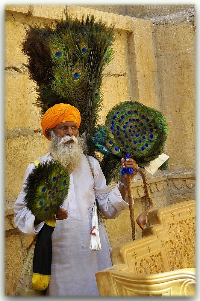 The seller of Peacock feathers.