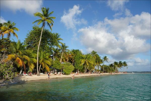 Guadeloupe...Bois Jolan beach.