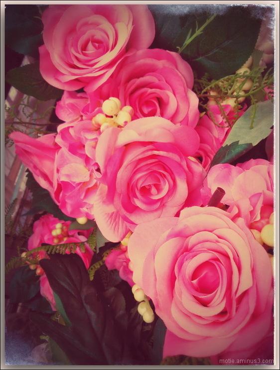 Bonne fête des mères............/Happy Mother Day