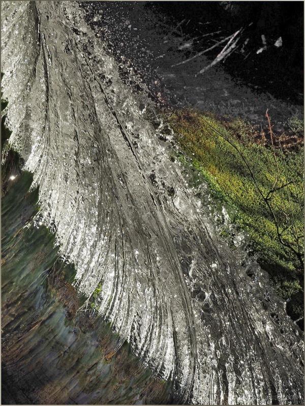 La plume....../ Feather.