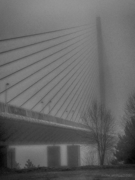 Le pont sous la brume