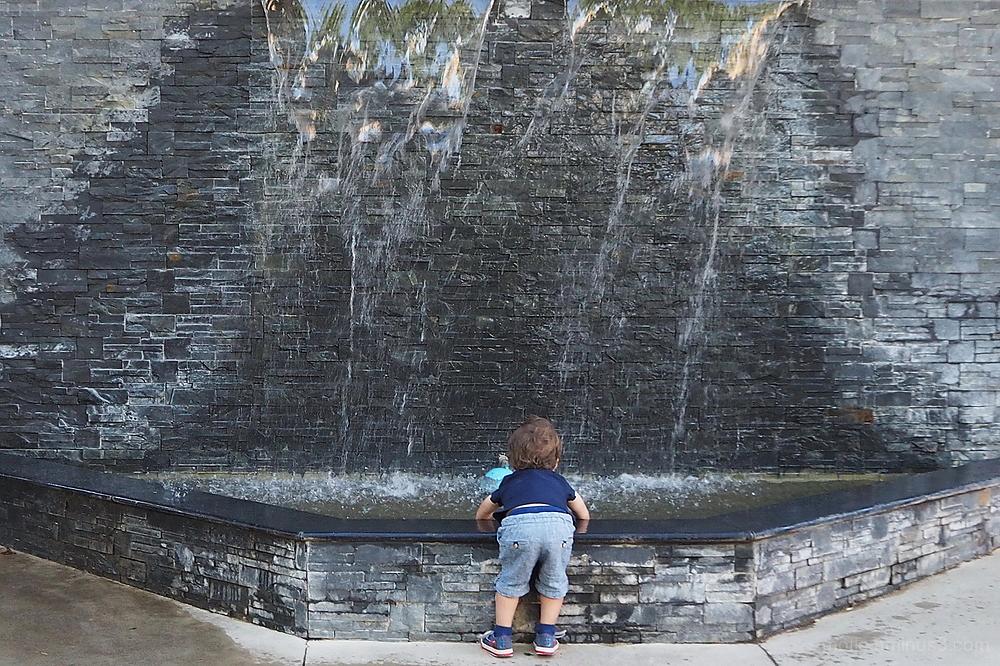 L'attirance de l'eau