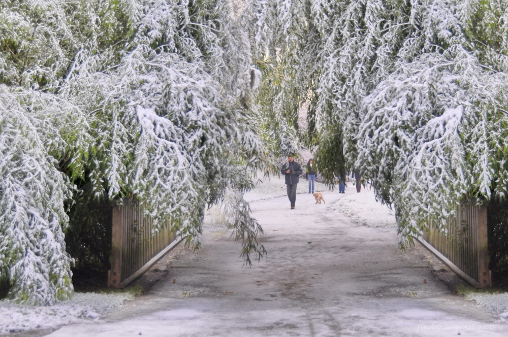 Le rideau tombe sur l'hiver