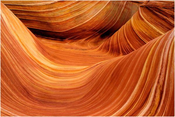 Wave Coyotte Butte