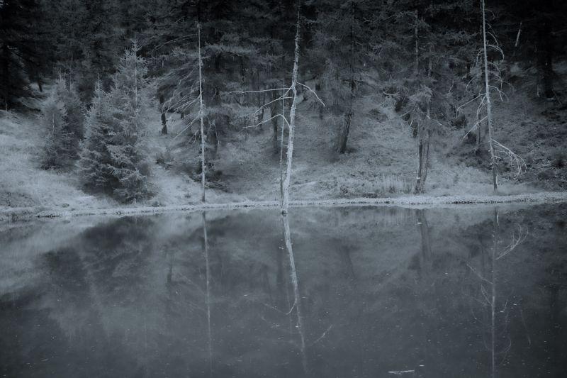 Reflets obscur