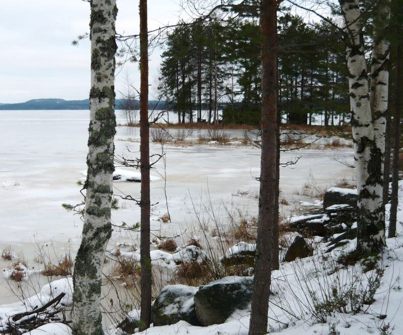 The lake in winter... it s just lovely!