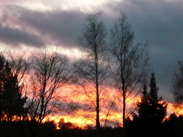 Sky ''on fire'' (2)