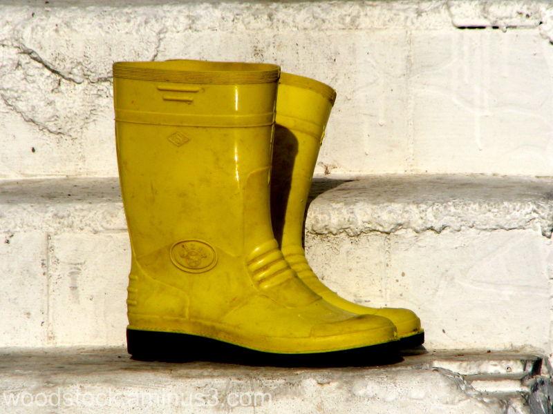Kusidasi Turkey Yellow wellie boots