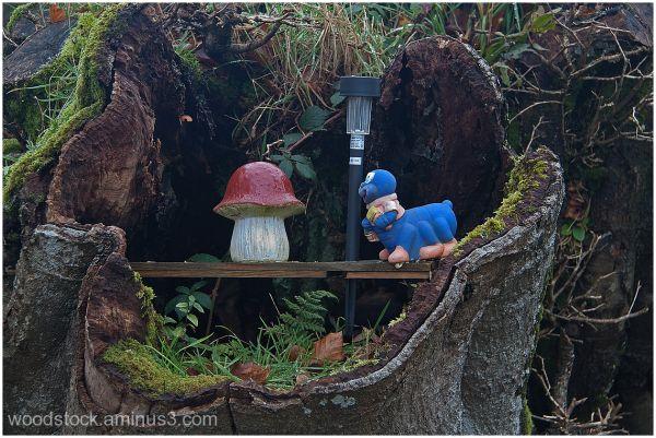 The Informal Garden (3 of 3)