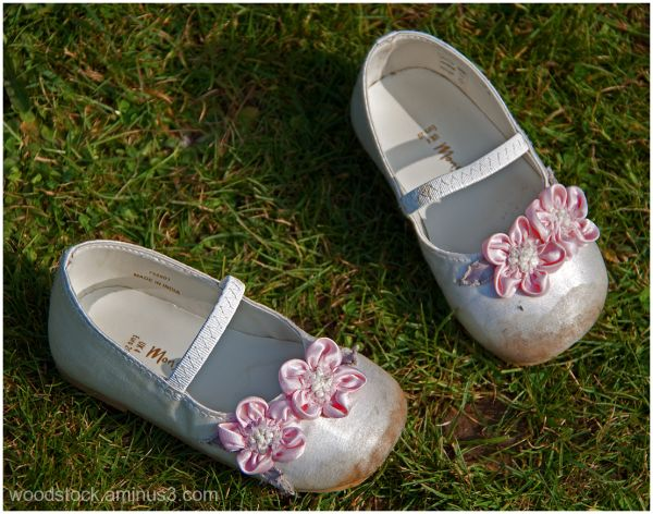 The Flower Girl's Shoes 5 of 6